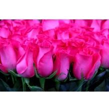 Букет № 3 из 35 роз